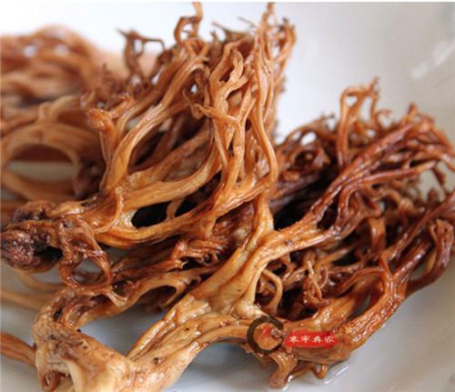 比鹿茸还强大的菌,你见过吗?