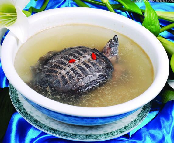 鹿角菜蛤蚧水鱼汤的做法