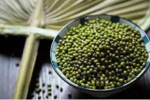 """【绿豆】传说中消暑解毒的济世良谷,燥热夏日里的""""小清新"""""""