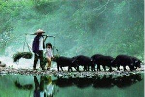【中国特有食材】舌尖上的湖南