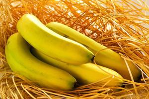 【香蕉】上帝赐予的智慧之果——香蕉