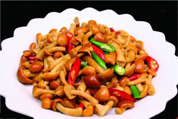 【滑子菇】好吃又美味的珍稀品种——滑子菇