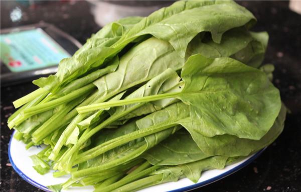 【菠菜】菠菜里的宝,你们知多少?——菠菜