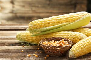 【玉米】玉米的功效与作用
