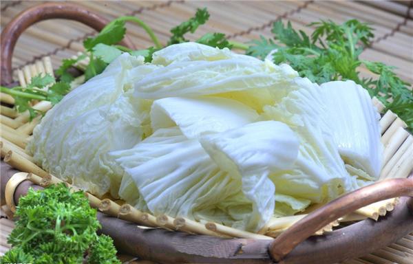 【大白菜】白菜不如大白菜,真的假的?
