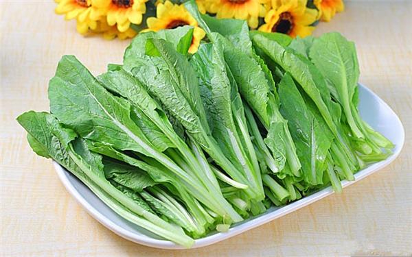 【小白菜】别看它普通,其实富含营养丰富!