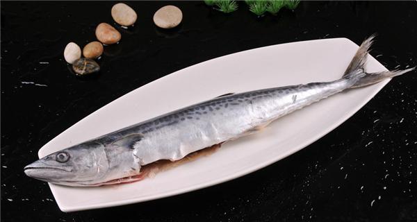 你的餐馆正缺一道马鲛鱼!